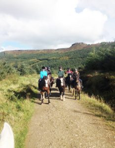 Activities and Adventures - Pony Trekking