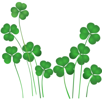 Irish Roots | Unusual Ways to trace Irish Ancestry