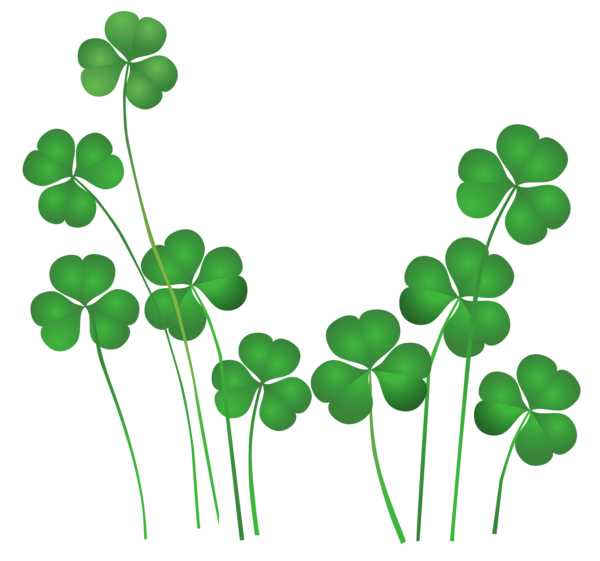 Irish Roots | Unusual Ways to trace Irish Ancestry