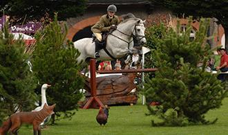 Dublin Horse Show | Lisheen Castle day trips